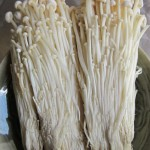 Enokitake Mushroom or Golden Needle Mushroom